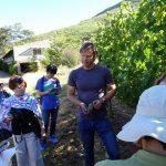 南アフリカワイン訪問記- キアモント(ステレンボッシュ)