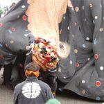 全国獅子舞フェスティバル その2