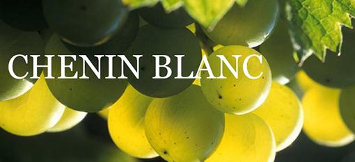 様々な品種から造られるバラエティに富んだワイン