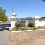 南アフリカワイン訪問記-ハーテンバーグ訪問