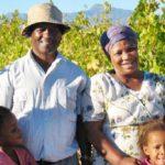 ワインに対する情熱と急速なワイン産業の発展