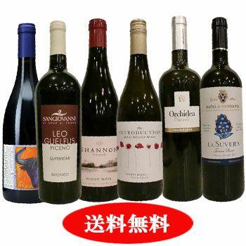 毎月変わる! ソムリエ厳選セット 月替り「ちょっと贅沢ワイン」 世界各国飲み比べ6本セット 6月セレクト